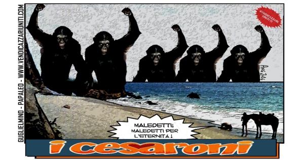 i Cesaroni.jpg